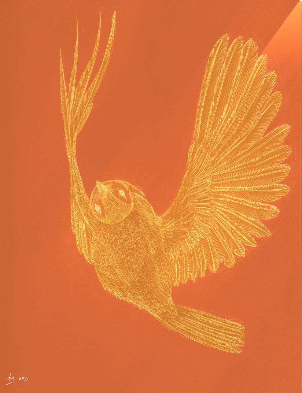 flying birds_2